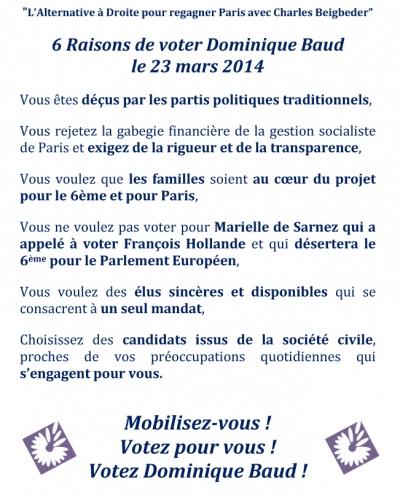dominique baud,paris 06,municipales 2014,paris libéré,charles beigbeder,de sarnez,ump,modem