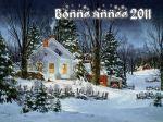 bonne-annee 2011.jpg