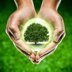 législatives 2012,programme,écologie,environnement,education,entreprises,paris 15,dominique baud,pld,france écologie,alliance centriste